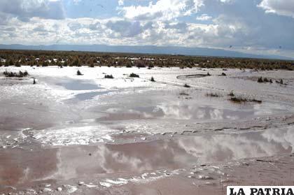 Alrededor de 1.000 bolivianos promedio pierden los productores a causa de desastres naturales