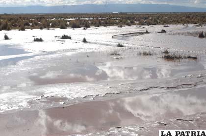 El río Desaguadero inundó los pastos y las áreas de forraje de las comunidades aledañas