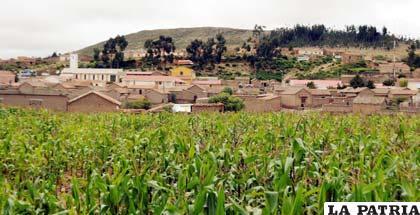 El municipio de Yamparaéz,del departamento de Chuquisaca