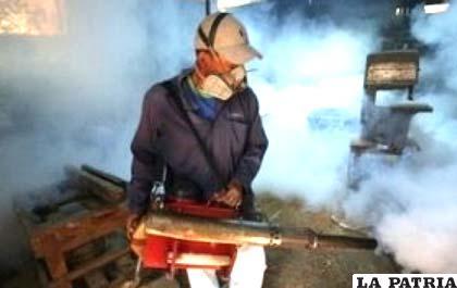 Inician fumigación en Santa Cruz por casos de dengue