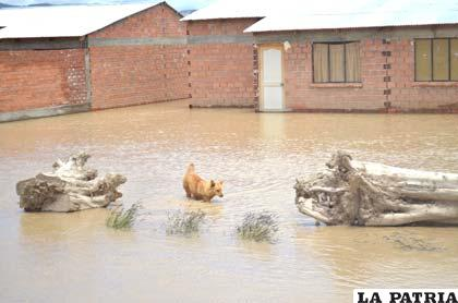 Las zonas afectadas requieren mucho trabajo por parte del Municipio