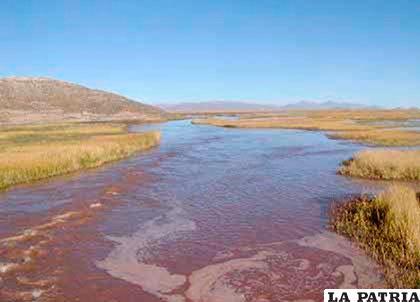 Una de las áreas afectadas por el derrame de petróleo del año 2000