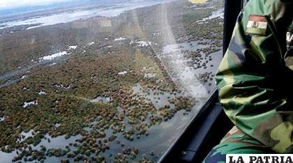 Bofedales cercanos al lago Poopó otra vez con agua /FACEBOOK