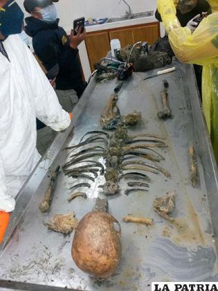 Los huesos de la mujer que falleció aparentemente en el mes de noviembre