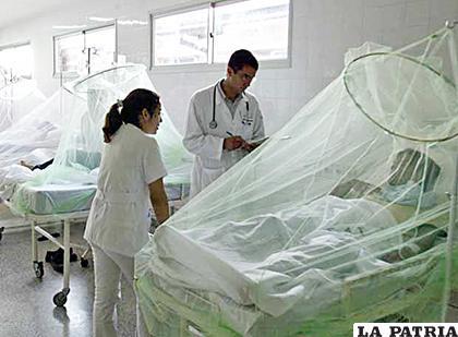 Pacientes con dengue sobrepasaron los mil en Cochabamba /ep00.epimg.net