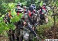 Mueren siete miembros del ELN en operación militar