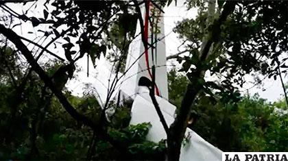 Árboles salvaron la vida de los tripulantes