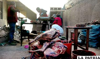 Pruebas de laboratorio determinarán si la carne empleada para elaborar el chorizo era de can