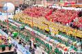 Festival de Bandas se pintó de rojo, amarillo y verde
