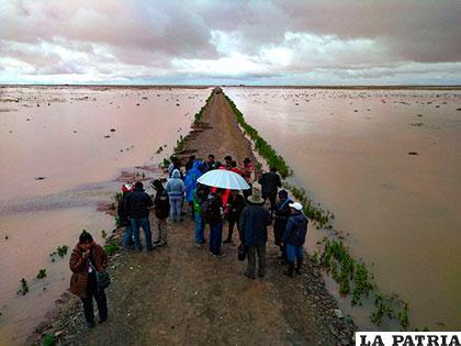 Planicie completamente inundada por desborde de río Desaguadero