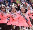 Llamerada: El aprecio del  hombre andino por la llama