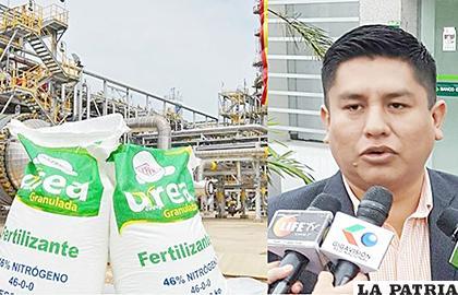 La producción de la planta está paralizada y diputado Cabrera exige reactivarla /ERBOL