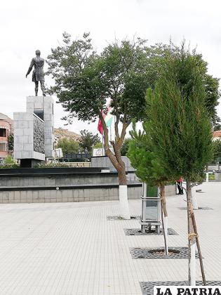 La estatua de Sebastián Pagador es vigilada por las diferentes especies de árboles / LA PATRIA