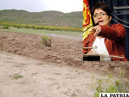 La ministra Peña (arriba der.) acusó al Comité Cívico y a la COD de Oruro de boicot a la solución en caso de límites