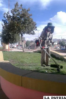 Trabajadores continúan  realizando el mantenimiento a las áreas verdes /metrolibre.com