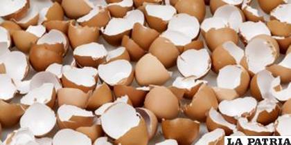 Esparcir cáscara del huevo molido aporta calcio a las plantas /1.bp.blogspot.com
