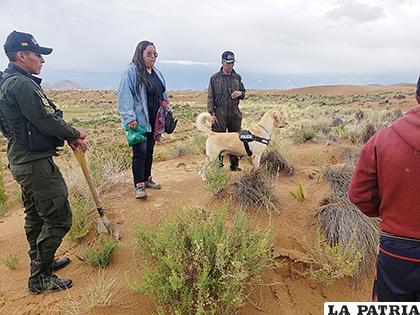 En el caso Adriana Toco, se solicitó el arribo de canes entrenados en la búsqueda de restos humanos /LA PATRIA