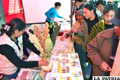 Productores compartieron conocimientos con la ciudadanía orureña