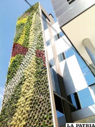 Estructura jardin vertical cheap jardin vertical interior for Estructura jardin vertical