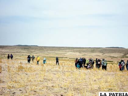 De la zona establecida con medidas precautorias se llevaron cosecha de quinua