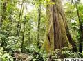 Ecuador protege su medio ambiente