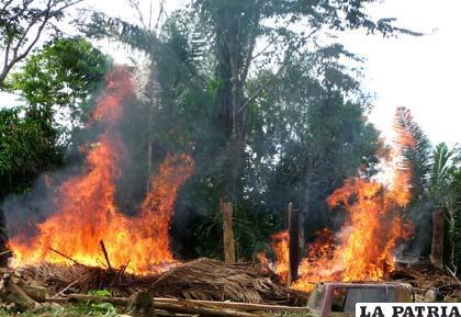 El quemar basura, bosques y usar aerosoles son las formas más comunes de contaminar el aire
