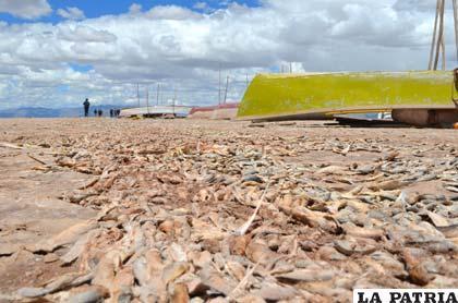 El escalofriante panorama del lago Poopó