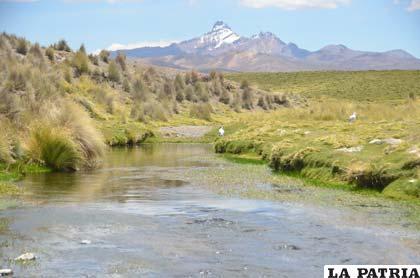Analistas coinciden que deben existir políticas de cuidado de la Madre Tierra