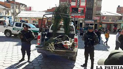 La marihuana fue resguardada por efectivos policiales