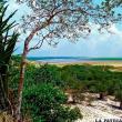 Sequía pone en riesgo sitios naturales del país
