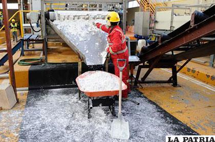 En esta u otra planta debe definirse el proceso tecnológico de la industrialización del litio boliviano