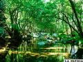 La buena salud de los ecosistemas