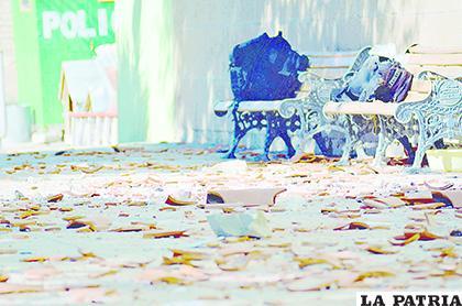 Las piedras y tejas que fueron aventadas a los policías /LA PATRIA