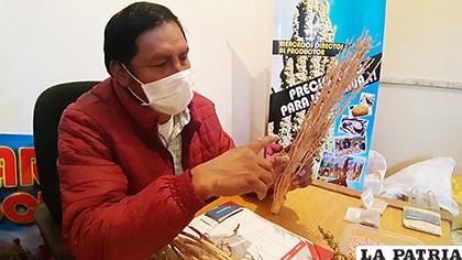 Existe preocupación en los productores de quinua /LA PATRIA