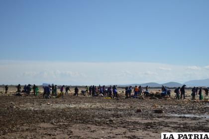Una gran cantidad de personas participó de la actividad de limpieza