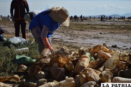 Muchos envases de plástico fueron retirados