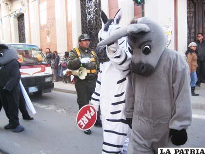 Por no respetar la señal de tránsito, la cebra lleva de la oreja al burro