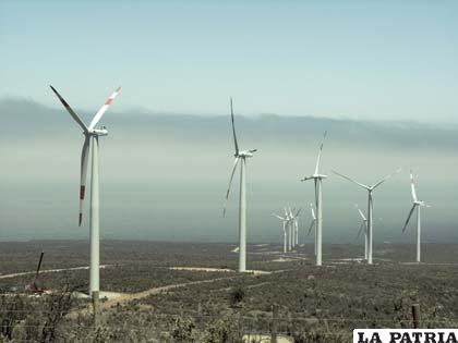 Los grandes parques eólicos en Texas causaron un aumento en la temperatura local, según el estudio