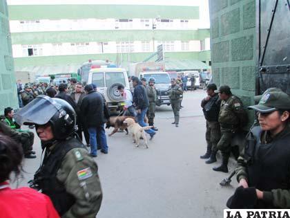 Dos canes ingresaron al Comando de Policía a buscar el explosivo