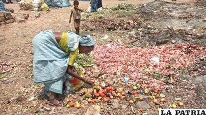 Cada año la región pierde o desperdicia alrededor del 15 % de sus alimentos disponibles