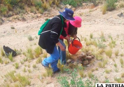 Se quiere consolidar el jardín botánico /Miguel Salas