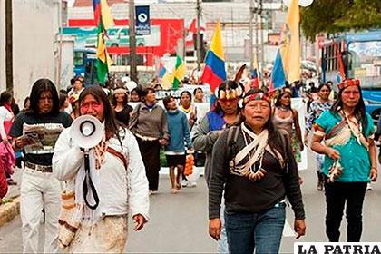 Indígenas denuncian asesinato de 65 miembros en menos de dos años