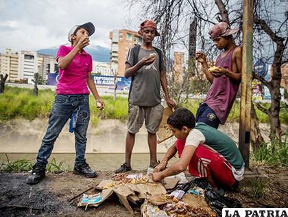 Un grupo de niños venezolanos busca comida entre bolsas de basura que obtuvieron en una panadería /EFE