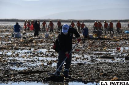 Hay mucho por hacer en el sector para limpiar el basural /LA PATRIA