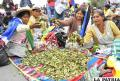 Mujeres muestran la hoja de la coca que comercializan /noticias.emisorasunidas.com