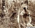 Resume en dos cortometrajes facetas de la Guerra del Chaco