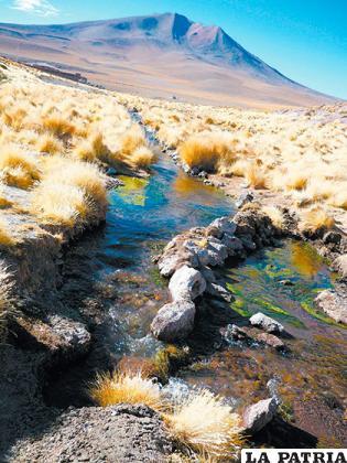 Aguas del Silala en demanda /VÍCTOR GUTI�?RREZ