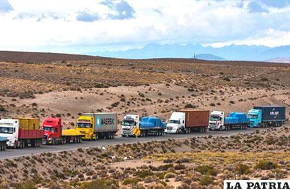 Transporte pesado estuvo detenido en la frontera con Chile durante 10 días /ELDIARIO.NET