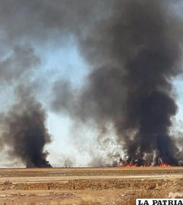 Quema de totora provoca grave contaminación ambiental /LA PATRIA