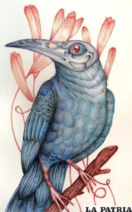 Su principal inspiración es la fauna y flora /LA PATRIA